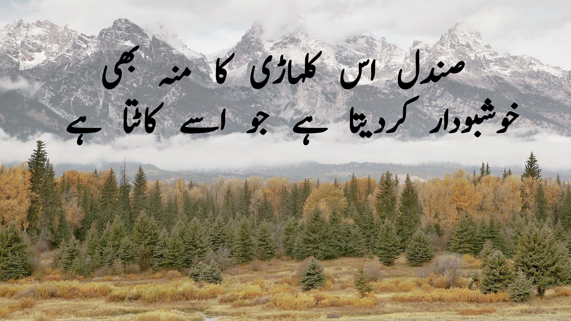 100+ Inspirational Islamic Quotes in Urdu | Life Changing